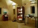 """Museo Civico Geopaleontologico """"Ardito Desio"""""""